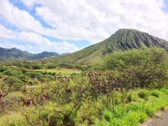 Koko Head Crater on Oahu, Hawaii.   #hawaii #oahu #honolulu #kokohead #hiking