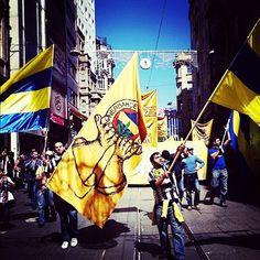 Her sabah özgürlüğe doğar Fenerbahçe #fenerbahce #fenerbahcetribun #nkcvas