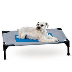 K&h Medium Coolin' Pet Cot In Grey/blue - The K&H Coolin' Pet Cot incorporates The Core Pad Technology into the center of the cot to keep your pet comfortable in the heat. Simply add water to keep the cover, and your dog cool. Dog Beds For Small Dogs, Cool Dog Beds, Large Dogs, Dog Cots, Pet Dogs, Pets, Waterproof Fabric, Pet Supplies, Blue Grey