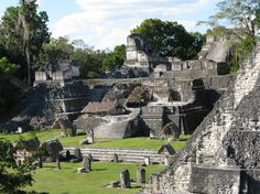 Tikal tip - Watching the sun set from temple 4 as you hear the booming roar of the Howler Monkeys is a magical experience. Tikal, Tropical Forest, Cultural Experience, Monkeys, Family Travel, Temple, Wanderlust, Journey, Holidays