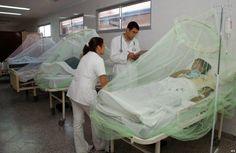 EL UNIVERSAL PERU: La chikungunya nos amenaza