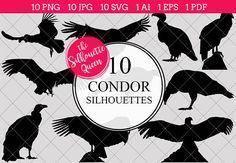 Condor Bird Silhouette Clipart Clip by The Silhouette Queen on Bird Tattoos Arm, Black Bird Tattoo, Tattoo Bird, Bird Outline, Tattoo Outline, Shape Tattoo, Bird Silhouette Art, Silhouette Vector, Silhouette Studio