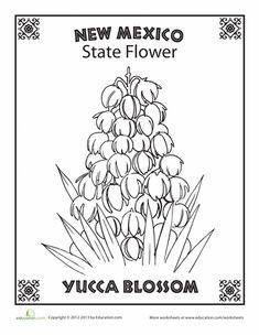 First Grade Coloring Worksheets: New Mexico State Flower New Mexico Tattoo, Flower Coloring Pages, Coloring Book, Adult Coloring, Mexico Crafts, New Mexico Tourism, New Mexico History, Embroidery Patterns Free, Embroidery Stitches
