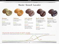 Basic Coffee Roast Levels