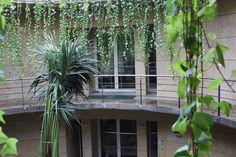 Biblioteca del Jardí Botànic José Pizcueta #biblioteques_UVEG
