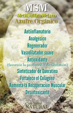 MSM El Azufre Orgánico Descubre sus Aplicaciones