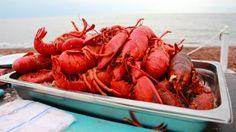 Lobster Party on the Beach, Fall Flavours Festival, Ceadar Dunes, Prince Edward Island