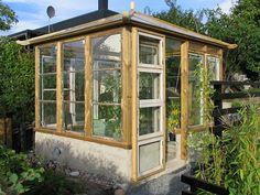 Greenhouse made of old windows / växthus av gamla fönster
