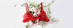 Hong Kong-based start-up Grana is adding lingerie to its product categories. French Lingerie, Quality Lingerie, Product Offering, Fashion News, Ads, Christmas Ornaments, Holiday Decor, Fabric, Tejido