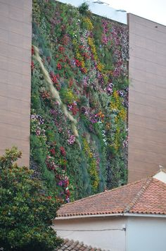 Vertical Garden in Cavalaire Sur Mer