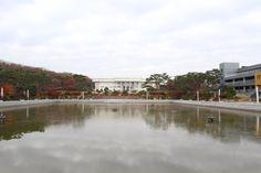 Fall falls down Hanyang...