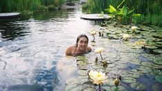 Swimming Pool Pond, Natural Swimming Ponds, Natural Pond, Pool Water, Dream Pools, Aquatic Plants, Cool Pools, Pool Designs, Dream Garden