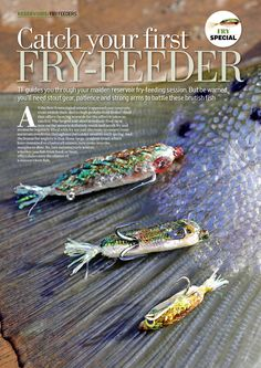 Fry Special - Catch fish on fish imitations! Fishing Magazines, Strong Arms, Fries
