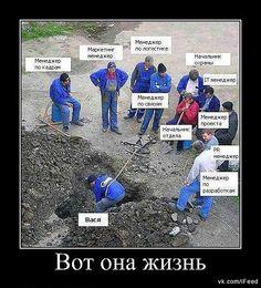 организация труда