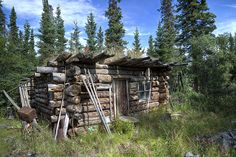 Abandoned trappers cabin