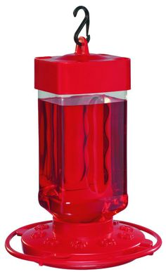 Amazon.com: First Nature 3055 32-ounce Hummingbird Feeder: Patio, Lawn & Garden