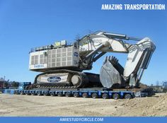 Amazing Transportation!
