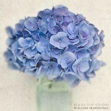 blue by summerdresses2012, via Flickr