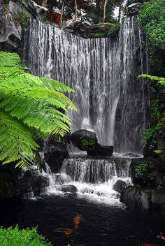 Waterfall @ Longshan Temple, Taipei, Taiwan-another site that looks much cooler in pictures than it does in person. Taiwan Travel, Asia Travel, Beach Travel, Beautiful Waterfalls, Beautiful Landscapes, Beautiful Islands, Beautiful Places, Places To Travel, Places To See