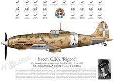 Macchi C.202 Folgore - Breda serie 1 M.M 7919 s/n 84-12 - Capitano Pilota Franco Lucchini, Regia Aeronautica, 84a Squadriglia, X Gruppo C.T., 4° Stormo