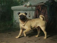 """""""Pug"""" -- by Conradyn Cunaeus (Dutch, 1828–1895)"""