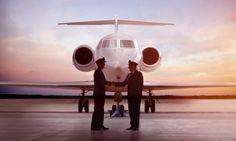 Career Pilot / Finding your nest -