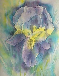 """Thomas Habermann ~ """"Iris"""""""