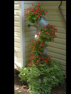 Tipsy Pots - Garden Junk Forum - GardenWeb