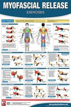 Myofascial Release Fitness Gym Physiotherapy Wall Chart Poster - PFP Cellulite Wrap, Reduce Cellulite, Anti Cellulite, Cellulite Exercises, Foam Roller Exercises, Stretching Exercises, Fascia Stretching, Fitness Gym, Fitness Humor