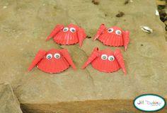 seashell crabs | Meet the Dubiens