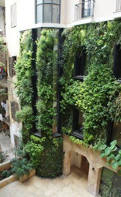 Żywa ściana Patricka Blanc'a. Takie wertykalne ogrody to niezbędny element eko- i bio-miasta.