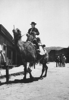 """To win a desert race on Have Gun, Will Travel, Paladin (Dick Boone) trades his horse for a camel and rides up to the TV saloon set."""""""