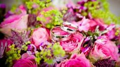 Simple Wedding Tips. Brides dream about having the ideal wedding day, but for this they require the perfect wedding dress, with the bridesmaid's dresses enhancing the wedding brides dress. These are a number of tips on wedding dresses. Wedding Advice, Wedding Blog, Wedding Favors, Wedding Ceremony, Wedding Venues, Dream Wedding, Wedding Ideas, Reception, Wedding Entrance