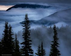 Celestial Blues-Olympic National Park (by Trevor Anderson) / Photo Art Landscape Illustration, Watercolor Landscape, Pictures To Paint, Cool Pictures, Pinturas Bob Ross, Foggy Mountains, Bob Ross Paintings, The Joy Of Painting, Washington State