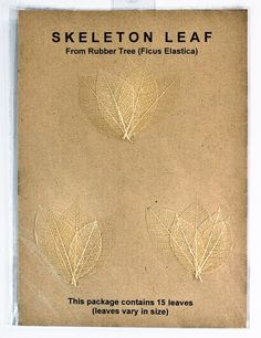 Origami Paper Monster - Mini Rubber Tree Leaf Snow, $3.99 (http://www.origamipapermonster.com/mini-rubber-tree-leaf-snow/)