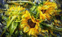 David Bishop Photography | Florals | 2