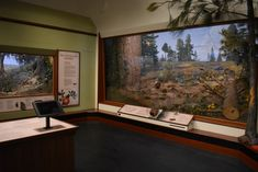 Image result for santa barbara museum of natural history Two of our fabrication/installs of Santa Barbara local native plants and landscapes built by Academy Studios, Inc. in 1991