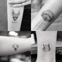 Micro Pet Portrait Tattoos by Sanghyuk Ko, NYC, @mr.k_tats