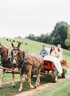 country wedding | Michael & Carina