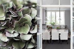 Garden Living, William Morris, Dining Room Furniture, Coastal Living, Rum, Living Spaces, Dining Table, Interior Design, Inspiration