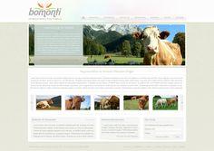 Bomonti website design