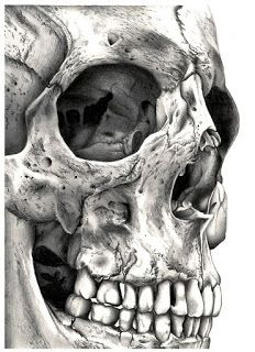 Close up skull would be a good tattoo, with something hidden in the eye. city scape, comic book scenario/villain, doctor who reference etc. Thigh/side/leg/upper right arm (ribs maybe? but PAINFUL – Art Skull Tattoos, Cool Tattoos, Insane Tattoos, Totenkopf Tattoos, Arte Horror, Skull And Bones, Skeleton Bones, Human Skeleton, Human Skull
