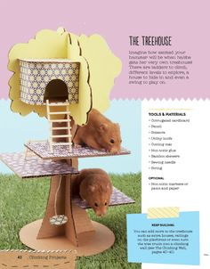 Projects for pets from 'Homemade for Hamsters'