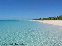 @vir_guinie : C'est une des plages les plus belles que j'ai eu la chance de fouler. Ouvéa #NouvelleCalédonie pic.twitter.com/m8X2pMiItI