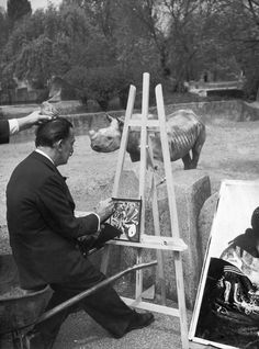 When Salvador Dalí tried to get a rhino to attack a Vermeer painting