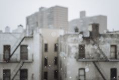 "friedasophiejewelry:  ""first flakes by Several seconds on Flickr.  """