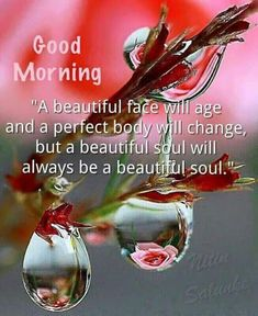 In today's post, we are presenting good morning msg. If you are searching for good morning msg you are welcome to our website. Good Morning Beautiful Quotes, Good Day Quotes, Good Morning Inspirational Quotes, Good Morning Quotes, Morning Sayings, Night Quotes, Morning Quotes Images, Morning Greetings Quotes, Good Morning Images