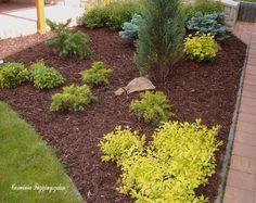 v19 Garden Park, My Secret Garden, Stepping Stones, Yard, Outdoor Decor, Nature, Plants, Gardens, Blog