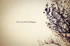 letting go quotes | Quotes - I Love You, But I'm Letting Go by BoricuaButterfly